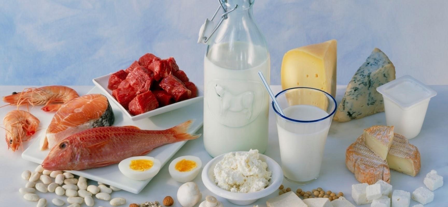 Питание после переноса эмбрионов 34